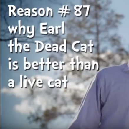Reason #87 Why Earl the Dead Cat is Better Than a Live Cat